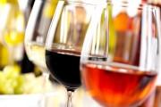 Naj vino 2016