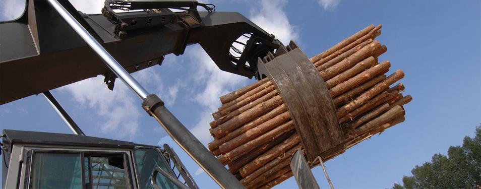 30.000 kubika drveta u 2013